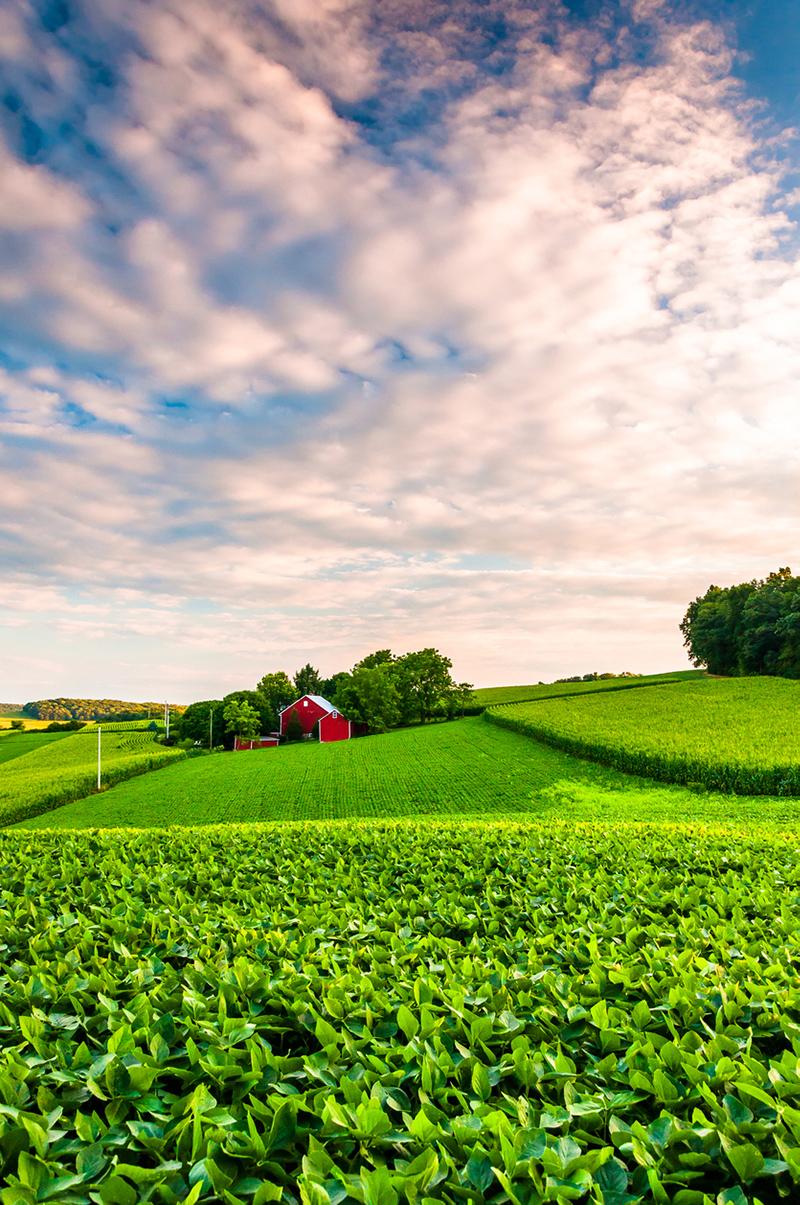 Western Pennsylvania farm